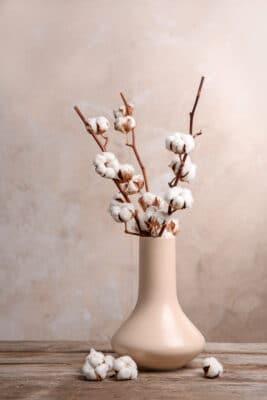 rami di cotone decorativi - consegna a domicilio