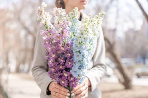 fiori recisi per mazzi - consegna a domicilio